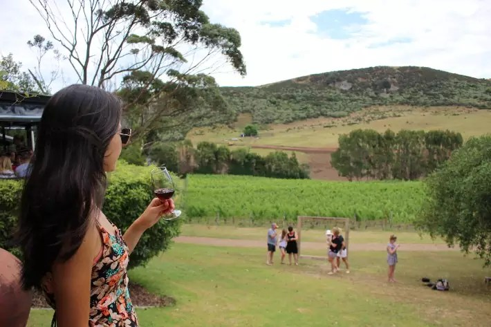 waiheke new zealand wine tasting