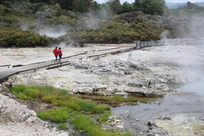 Tour Hell's Gate Geothermal Park Mud Spa, Rotorua, New Zealand