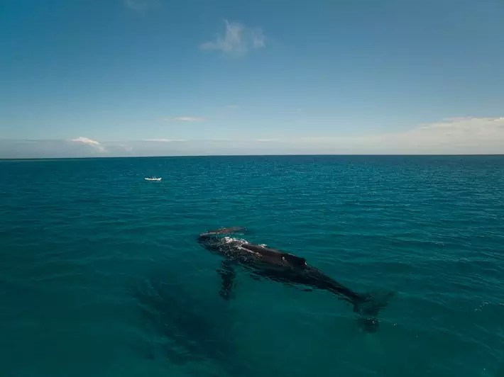 Uonukuhihifo, Tonga - OutChasingStars; Best drones for travel