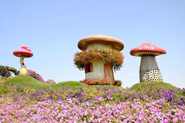 Dubai Miracle Garden, Reasons Why You Should Visit Dubai