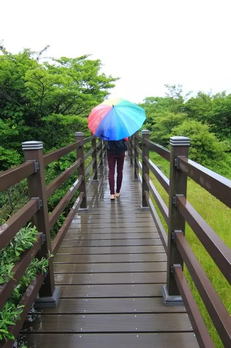 1100 Highland; 1100 Meter Road boardwalk view, things to do in jeju island; what to do in jeju island, jeju island attractions