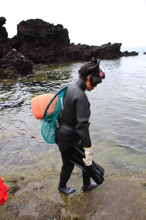 Seongsan Ilchubong Peak haenyeo women diver,things to do in jeju island; what to do in jeju island, jeju island attractions