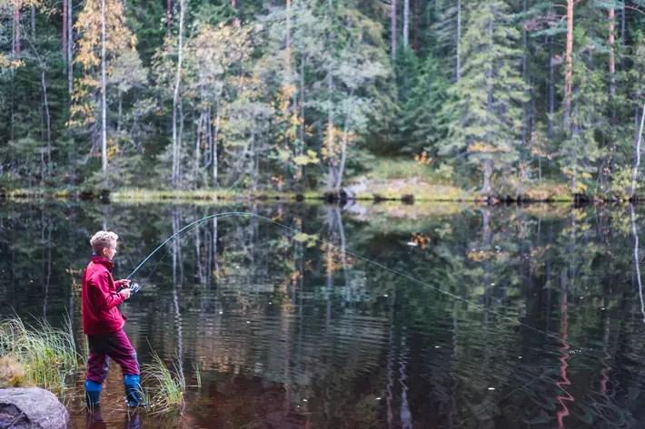 boy fishing, Nuuksio National Park