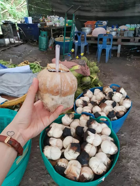 fresh burnt coconut, Day-trips-from-Bangkok,-Thailand
