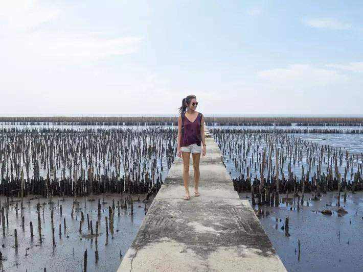 mangrove-boardwalk,-Day-trips-from-Bangkok,-Thailand