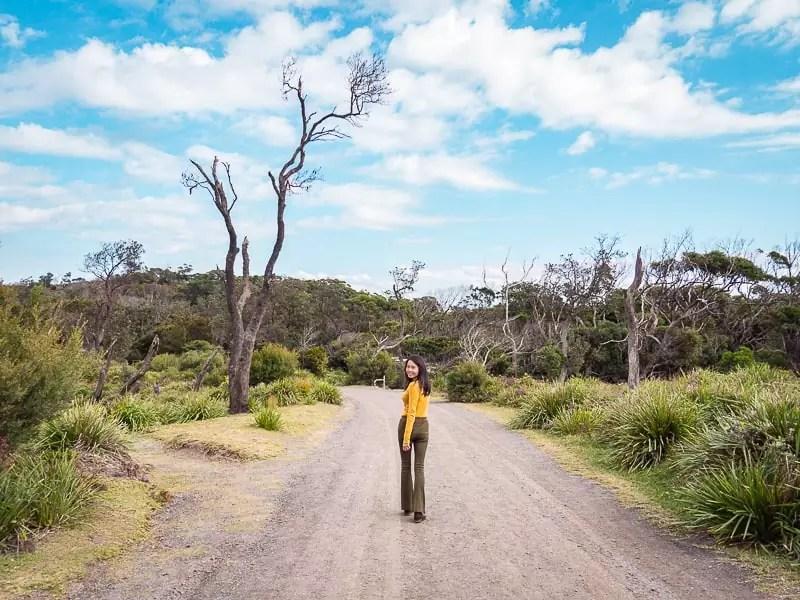 jervis-bay-national-park-australia