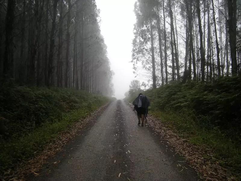 Camino del Norte, Camino de Santiago