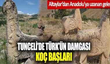 Altaylar'dan Anadolu'ya… Tunceli'de Türk'ün damgası: Koç başları
