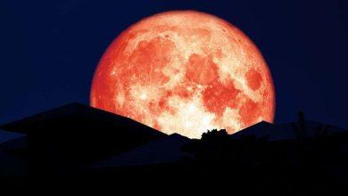 صورة لا تنسى مشاهدة قمر الفراولة هذا المساء!