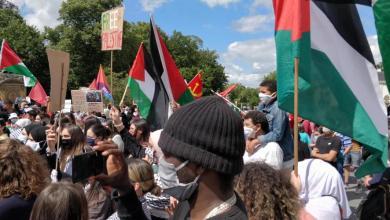 صورة نحو 500 متظاهر في بروكسل ضد ضم الأراضي الفلسطينية (صور)