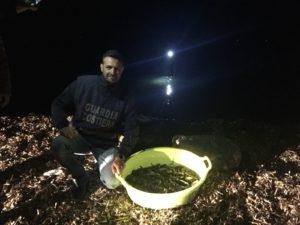 Pesca di oloturie a Nubia, l'intervento di contrasto della Guardia Costiera