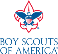 Image result for boy scouts of america