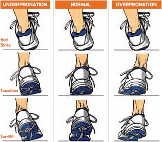 over pronation image chart