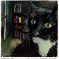 librarycat4x411072