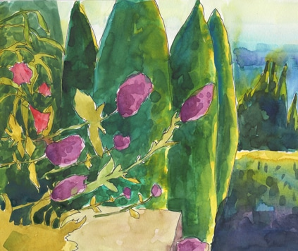 Watercolor Sketch: Study for Cypress Viewfinder