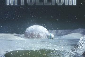 Mycélium par Christian Perrot