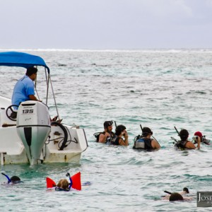 Diving in Belize is one of the main reasons why tourist visit Ambergris Caye.