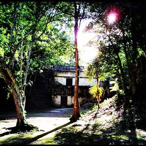 cahal pech maya site jungle setting