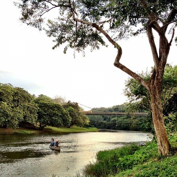 macal river canoeing in San Ignacio, Cayo, Belize