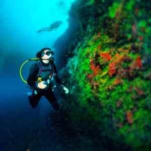 Scuba diving in Belize's Blue Hole