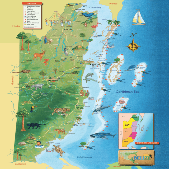 Where is belize located lets look at maps of belize belize belize map gumiabroncs Gallery