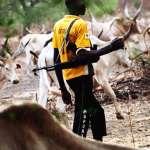 fulani herdsmen - Police arrests violent Fulani herdsmen in Benue State