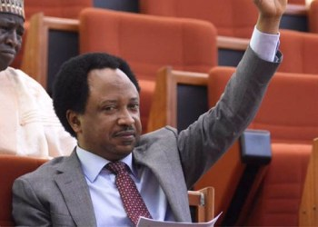 Shehu Sani is Suing EFCC N100 Million for Illegally Detaining him