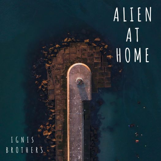 Image result for Ignis Brothers – Alien At Home