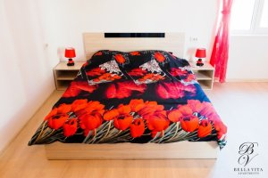 Удобно двойно легло в едностаен апартамент под наем Благоевград