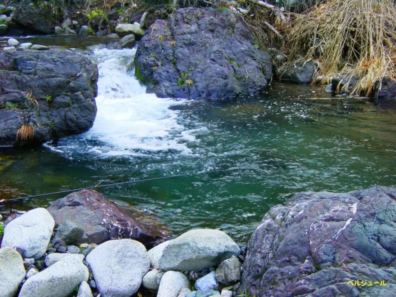 tokuyama00001 - 揖斐川上流・旧徳山村での岩魚釣り