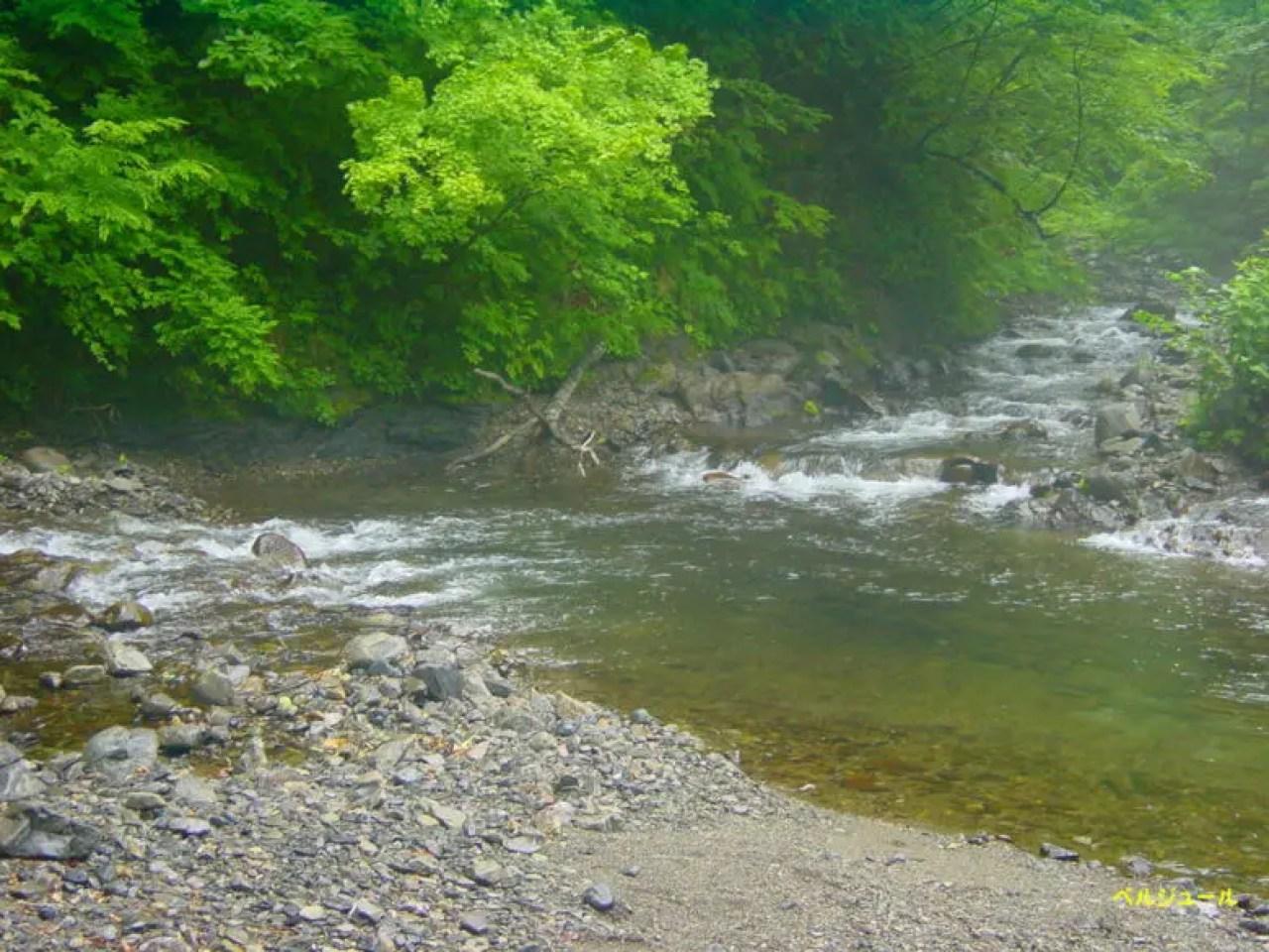 tokuyama00014 - 揖斐川上流・旧徳山村での岩魚釣り