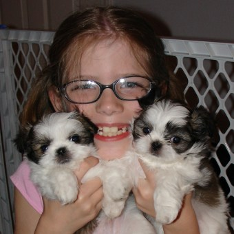 Felicity with puppies
