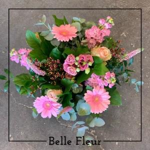 Mooi Roze Belle Fleur Bloemen en Planten Zwolle