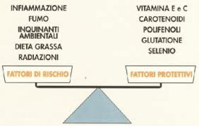 antiossidanti schema