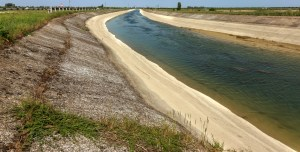Rice Irrigation Canal after Freshwater Inflow Plate from Mainland Ukraine - Source: Lesik, A. Rice Irrigation Canal After Freshwater Inflow Plate from Mainland Ukraine. Digital Image. Shutterstock, 2014