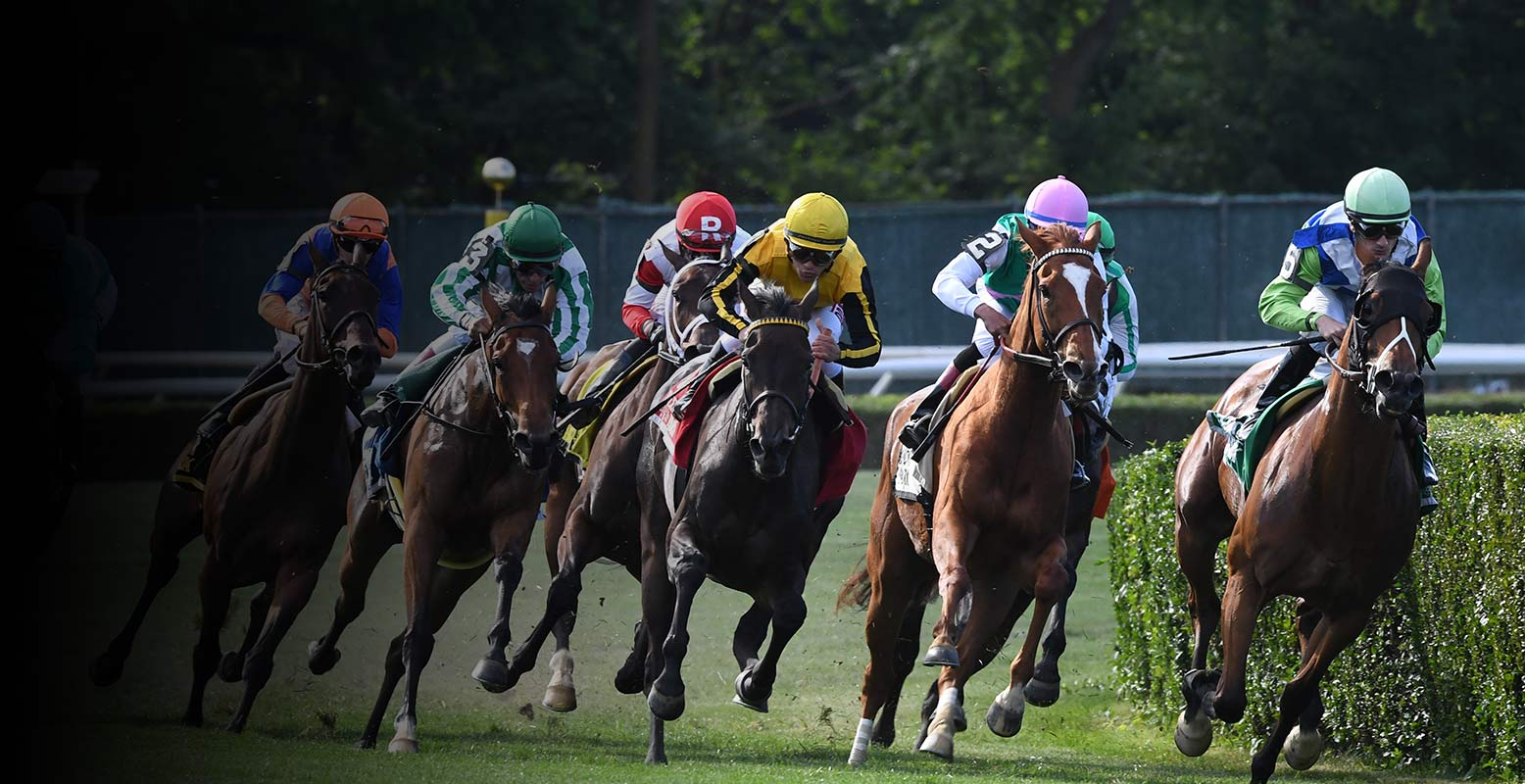 Home Belmont Stakes