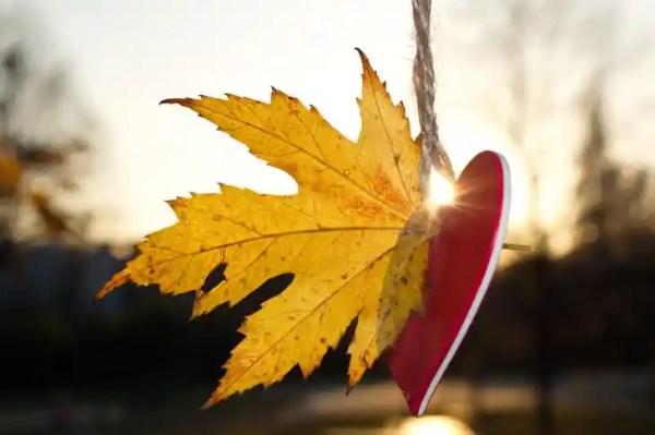 4 знака зодиака, с которыми осенью не следует заводить ...