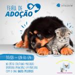 Shopping Estação BH promove feira de adoção de cães e gatos no sábado, 30 de março