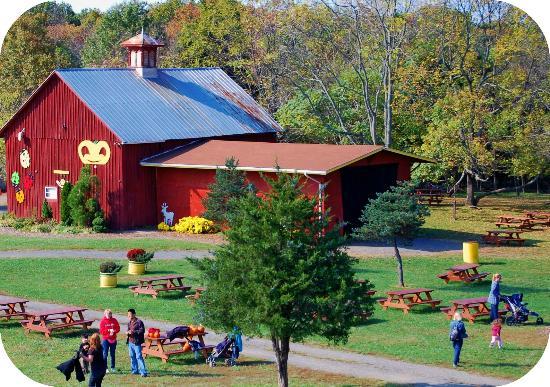 ticonderoga-farms