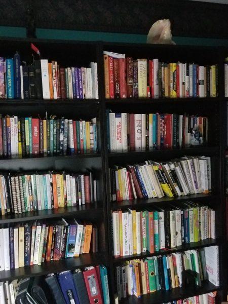 The Magic of Books photo of bookshelf by Belynda Wilson Thomas