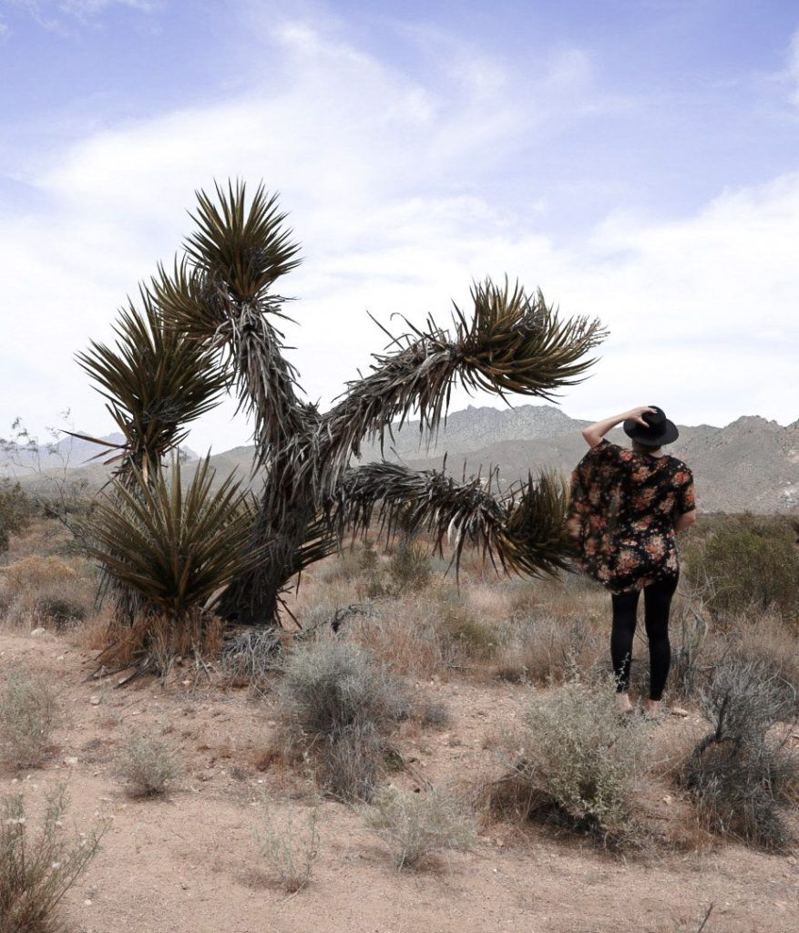 Monica in front of Joshua Trees and mountains in the Mojave National Preserve.