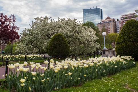 Public_Garden