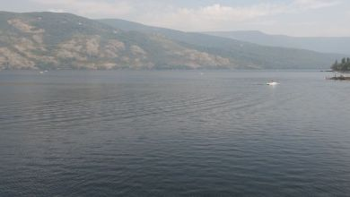 Photo of Aprobados 377.000 euros para financiar la depuración de las aguas del Lago de Sanabria