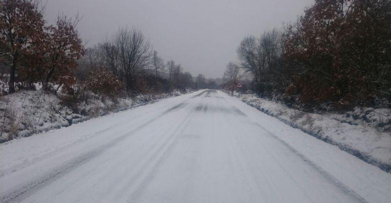 Carretera Trefacio (Alex San Román)