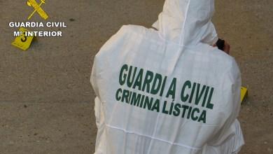 Photo of La Guardia Civil detiene al supuesto autor de dos robos con fuerza en Sanabria