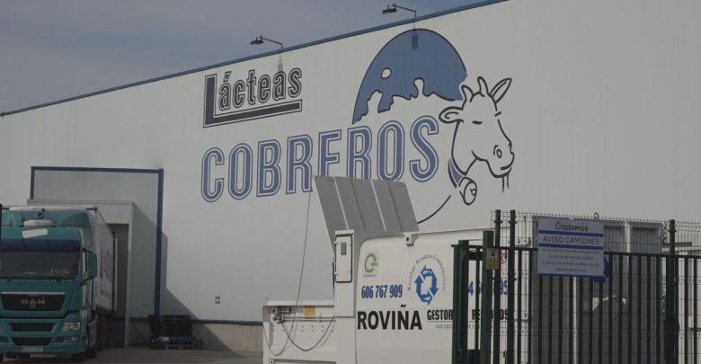Photo of Lácteas Cobreros la quesería española más premiada en los Global Cheese Awards