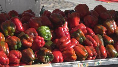 Photo of Correos lanza en Benavente una nueva campaña especial para el envío de pimientos y cebollas
