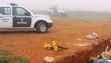 Photo of La Guardia Civil investiga a una persona como supuesto autor de un delito de maltrato animal en Benavente