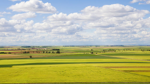 Photo of La Consejería de Agricultura, Ganadería y Desarrollo Rural recibe 67.709 solicitudes de la PAC