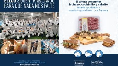 Photo of La Diputación anima al consumo de productos ganaderos zamoranos para mantener el sector productivo en la provincia